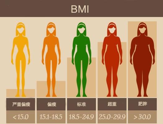 BMI参考图